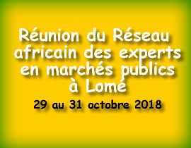Réunion Réseau Africain